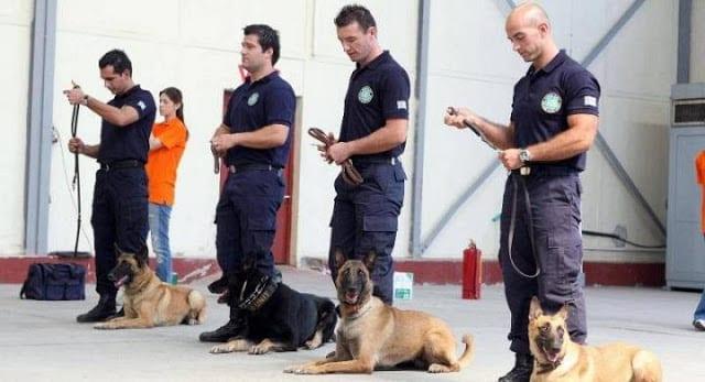 Σκυλιά - Ελληνική Αστυνομία, 26 Μαΐου