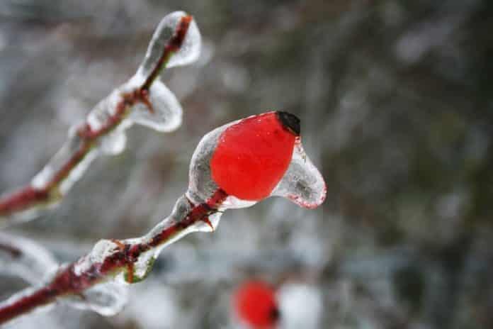 παγωμένη βροχή Υπατία