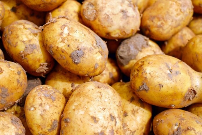Χειροβομβίδα του Α' Παγκοσμίου βρέθηκε σε φορτίο με… πατάτες