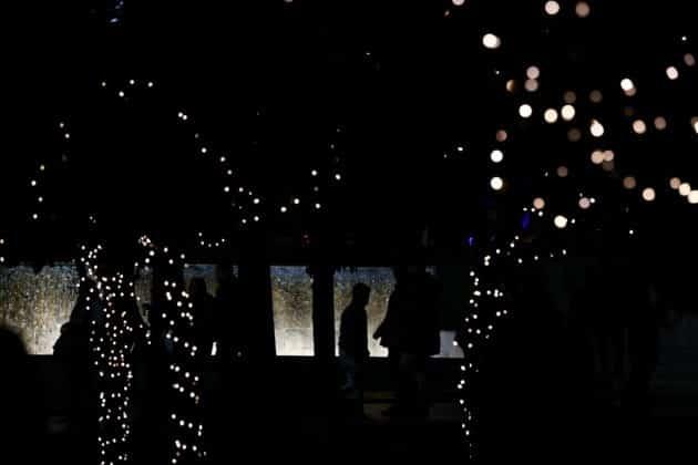 Αθήνα: Δείτε το χριστουγεννιάτικο δέντρο Άναψε υπό βροχή ΦΩΤΟ 3 Αθήνα: Δείτε το χριστουγεννιάτικο δέντρο Άναψε υπό βροχή ΦΩΤΟ
