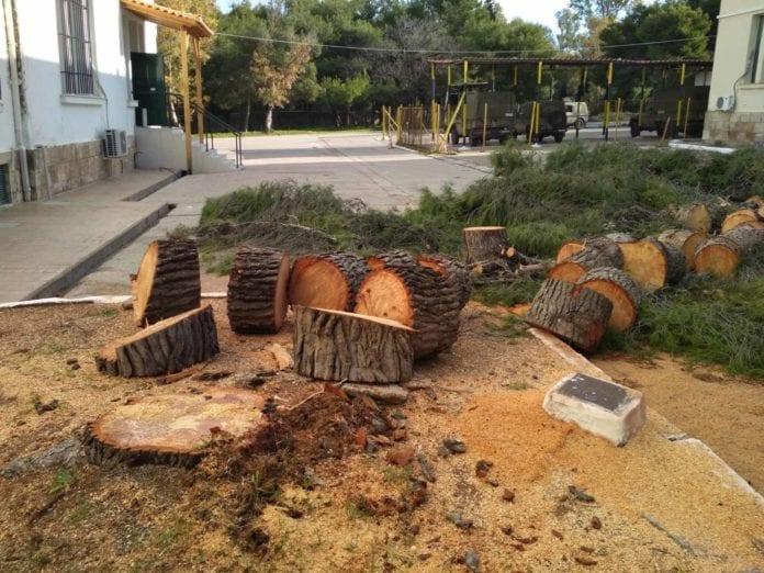 ΑΣΔΥΣ: Έκθετο το ΓΕΣ για την κοπή δέντρων