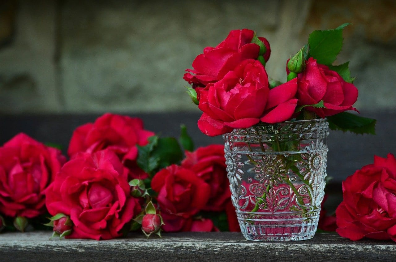 Γιορτή σήμερα 11 Φεβρουαρίου Εορτολόγιο Ποιος γιορτάζει στις 12/2 στην Ορθόδοξη Εκκλησία - Μην ξεχάσετε να ευχηθείτε - Καιρός