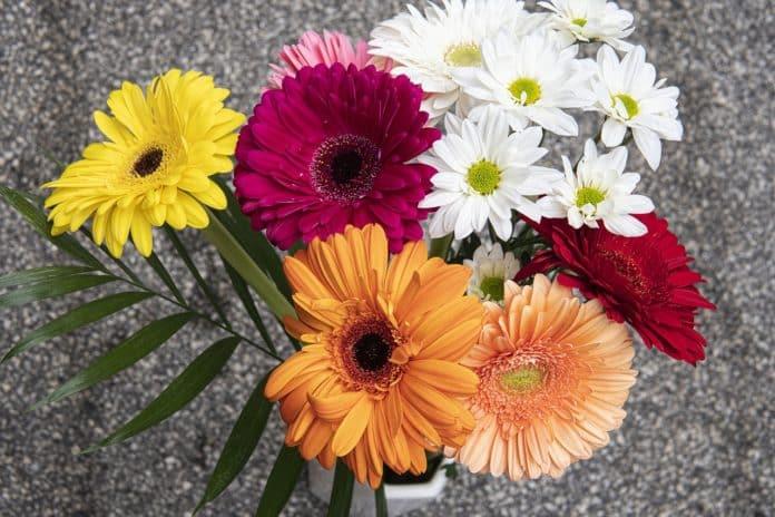 Εορτολόγιο 21/11: Γιορτή σήμερα Σάββατο 21 Νοεμβρίου - Τα Εισόδια της Θεοτόκου Χρόνια Πολλά Μαρία - Δείτε ποιοι γιορτάζουν στο Armyvoice.gr
