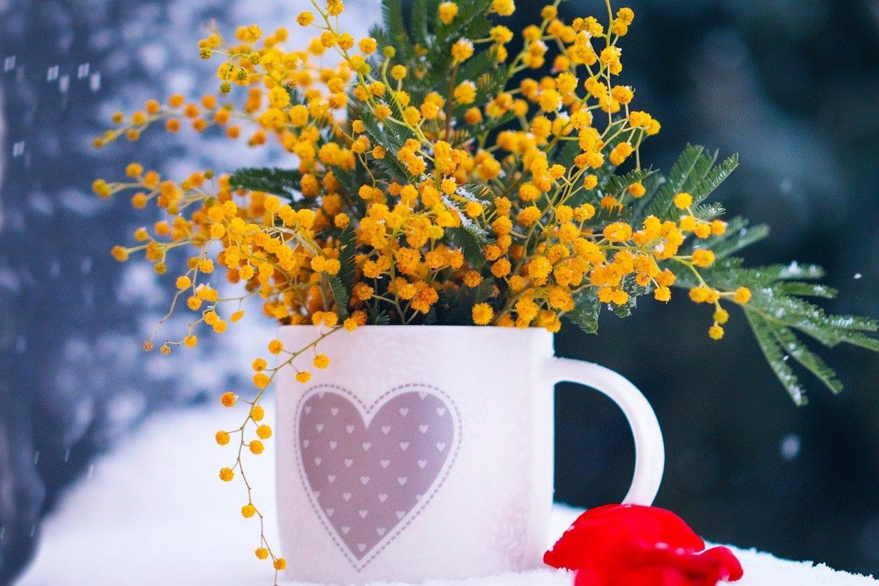 Τι γιορτή είναι σήμερα 20 Φεβρουαρίου Ποιοι γιορτάζουν 20/2 -Εορτολόγιο